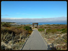 Early Morning on the Boardwalk: Asilomar, Pacific Grove, CA (Melinda ....) Tags: california morning beach geotagged coast sand gate state pacific lodging dunes restful historic resort memory boardwalk restoration asilomar fondmemory