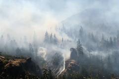 Rowena Fire 8-7-2014 (bulldog008) Tags: trees oregon forest river fire smoke columbia smokey gorge smoky wildfire rowena wildland