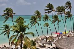 Palm Beach (MBSBrito) Tags: sea sun sol praia beach mar playa aruba caribe
