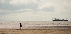 5aug36 (Richard G. Hilsden) Tags: uk england britain richard crosby antonygormley merseyside 2014 anotherplace hilsden richardghilsden