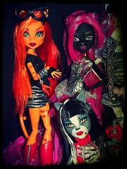 Gatas Monster High (XEMO`S _FASHION_DOLLS) Tags: monster high noir cam stripe gatas catty catrine pursephone demew toralei meowlody