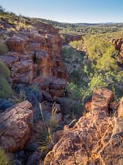 trephina gorge - 7200325 (liam.jon_d) Tags: bestlandscapeimset australia australian billdoyle centralaustralia centralaustralian east easternmacdonnellranges macdonnellranges northernterritory nt outback redcentre theredcentre trephina trephinagorge trephinagorgenaturepark landscape omd em1 omdem1 olympus digital olympusdigital 43 micro micro43 microfourthirds pro prokit 1240mm mzuiko mzuiko1240mm mzuiko1240mmf28 pickmeset