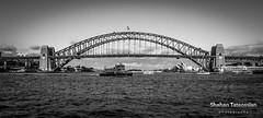 Sydney Harbour Bridge (ShahanT Photography) Tags: bridge harbour sydney australia northshore nsw northside harbourbridge northsydney sydneyharbour sydneyharbourbridge kirribilli milsonspoint bluespoint destinationnsw canoncollective
