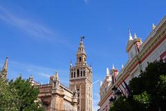 Plaza del Triunfo (Triumph Square) (tseyin) Tags: travel color architecture spain europe colours roman seville worldheritage travelphotos architecturedigest