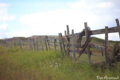 Fading Fence (saku1997) Tags: canada canon fence landscape wire scenery bokeh farm alberta prairie camrose canonef85mmf12liiusm canoneos5dmarkii donarsenault