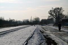 Auschwitz (025)