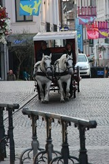 paardenkoets (mechelenblogt_jan) Tags: mechelen hoogbrug ijzerenleen paardenkoets mechelenbinnenstebuiten