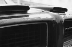 grounded bird (explored) (Mark.Swanson) Tags: auto film car illinois minolta 11 grill d76 formula pontiac hoodscoop iso50 srtmcii epsonv500 normalprocessing mdrokkorx1750mm kodakpolypanf