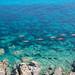 Corsica, near Ajaccio