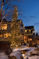 LED & Incandescent Lights (Christmas World) Tags: lighting christmas light house holiday snow tree led mo event incandescent slo c9 c7 christmaslitescom