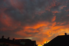 Ciel de feu (mamietherese1) Tags: sunset cloudy alsace coth concordians earthmarvels50earthfaves dragondaggerphoto saariysqualitypictures sailsevenseas coppercloudsilvernsun cloudsstormssunsetssunrises