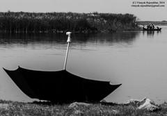 Fishing in the Yamuna (vinayak.rajesekhar) Tags: new urban india river fishing delhi pollution development economics ecosystem pradesh uttar yamuna wazirabad
