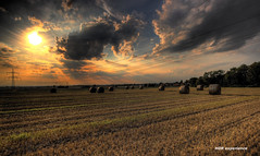 Summer (Michis Bilder) Tags: summer hdr