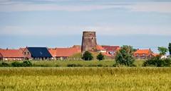 Looberghe, France.-vestiges du moulin (2)