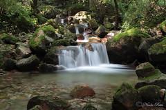 IMG_0370 (Nicholas Patta) Tags: acqua seta cascate torrente fiabesco brusimpiano trallo