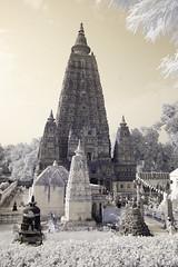 India_0177