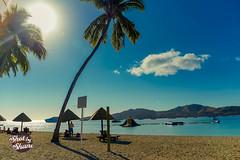 Plantation island Fiji (Shot by Shane) Tags: sun beach water fiji palms sand palmtrees snorkelling coconuts reefs plantationisland
