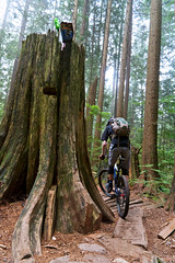 Empties (fbcanada33) Tags: mountain bike vancouver bc mtb fromme