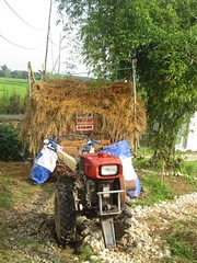 Tractor+trailer loaded with rice straws (cbe-sep) Tags: tractor farmequipment handtractor toolsandequipment handtractorwithtrailer