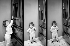 Hey fridge makers, if my 1-year-old can figure out your child-lock, you prolly shouldn't put it on the bottom in their reach (or make the sounds so charming). (EricRasch) Tags: september dates iphone triptychs 2014 otherkeywords