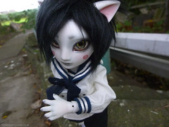 P1020954 (plasticmoon) Tags: ball doll artist mr kitty bjd jointed