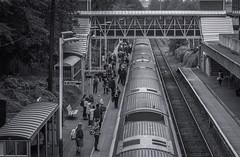 Arrival (Rob Jennings2) Tags: train reading platform bracknell readingtrain bracknellstation