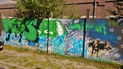 HardNesh / Heidestraat - 17 sep 2014 (Ferdinand 'Ferre' Feys) Tags: streetart graffiti belgium belgique belgi urbanart graff ghent gent gand graffitiart artdelarue urbanarte hardnesh