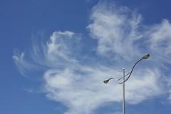 Wanna Fly (Singer ) Tags: street blue light sky cloud composition canon iso100 streetlamp pov snapshot wing taiwan atmosphere singer gr f56   ricoh   oneshot               streetsnap            wannafly  digitalcompactcamera  dc    apscsensor 1750sec   singer186