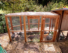 "Chicken Run • <a style=""font-size:0.8em;"" href=""https://www.flickr.com/photos/87478652@N08/15326965976/"" target=""_blank"">View on Flickr</a>"