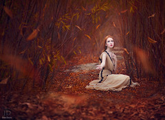 Waiting for Fall ({jessica drossin}) Tags: world autumn trees red woman fall girl beautiful leaves photography leaf seasons dress redhead falling textures redhair actions overlays jessicadrossin wwwjessicadrossincom jdbeautifulworldcollection