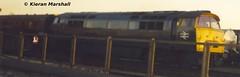 D1023 at York, 13/11/04 (hurricanemk1c) Tags: york 2004 train br railway trains railways britishrail nrm nationalrailwaymuseum wr brblue westernregion d1023 westernfusilier