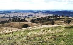 * 'Whites' 171 Shepherds Creek Rd, Euchareena NSW