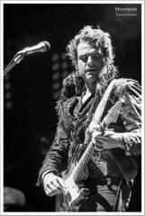 -M- Pause Guitare - Albi 2014 (24) (Meremptah (Yann B.)) Tags: festival brad lawrence concert matthieu m pause mojo albi guitare 2014 ackley scène chedid îl clais yodelice meremptah 2yeuxet1plume