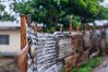 HFF: Corrogated Metal Sheet edition (w.mekwi photography [here & there]) Tags: wood trees green dof bokeh depthoffield zinc cameroon hff bamenda metalsheet nikond300 fencefriday wmekwiphotography wanmekwi wwwmekwicom hffcorrogatedmetalsheetedition