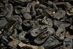 Auschwitz (020)