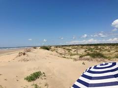 Shelter (morganchele) Tags: summer france beach seaside sand indigo bluesky parasol shade protection sanddunes iledolron charentemaritime eleclerc
