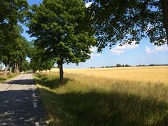 Mot nya ventyr (Patrick Strandberg) Tags: summer sun sol sweden sommar iphone stergtland iphone5s