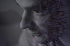 11-photographie-vanessa-lekpa (vanessalekpa) Tags: vanessa portrait woman selfportrait fleur girl beauty canon wonderful dark hair noir autoportrait femme surreal coeur dreaming sombre dreams emotions homme eos20d pnombre noirblanc selfie bris rves cauchemard vgtal lekpa beautyshoots
