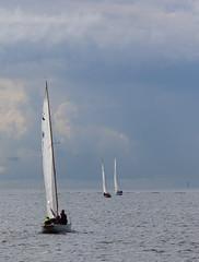 Viaporin Tuoppi XXX (Antti Tassberg) Tags: 30 finland boat wooden helsinki sailing yacht mug regatta xxx pint hai sailingboat uusimaa purjevene purjehdus tuoppi puuvene viaporin