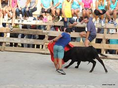 FiestasVispal14-072
