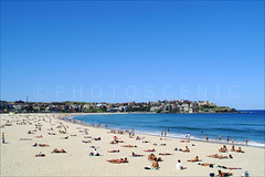 Bondi Beach,Sydney (Thomas Joannes) Tags: ocean seascape colour tourism surf waves photos thomas surfer sydney scenic picture australia surfing photograph nsw surfboard shelly newsouthwales coastline aus joannes australie sceneries  sydneybeaches frenchphotographer therocksmarket scenicphoto thomasjoannes manlywharfhotel photoscenic manlymarket