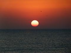 Sortida de sol (bertanuri bcn) Tags: barcelona leica sunset sea portrait naturaleza sun sol nature lumix see soleil mar mediterraneo bcn panasonic clear explore alicante amanecer lanscape amanece torrevieja alacant mediterrani albada explored torrevella bertanuri fz45 bertanuribcn