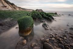 Schooner Gulch (Tn) Tags: ocean california longexposure seascape beach landscape moss pacific pacificocean mendocino gallaway schoonergulch bolwingballbeach