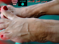 Moroccan Model 99 (mohawkvagina) Tags: sexy feet rose female foot isis footfetish moroccan bellecita womanfeet veiny sexyfeet feetfetish womenfeet maturefeet veinyfeet oldladyfeet milffeet sexyveinyfeet sexyveiny veinymoroccan veinymoroccanfeet bellecitafeet superveiny rosefeet oldwomanfeet moroccanfeet bellecitaveiny isisislamicstate isisfeet isisislamicstatefeet islamicstatefeet