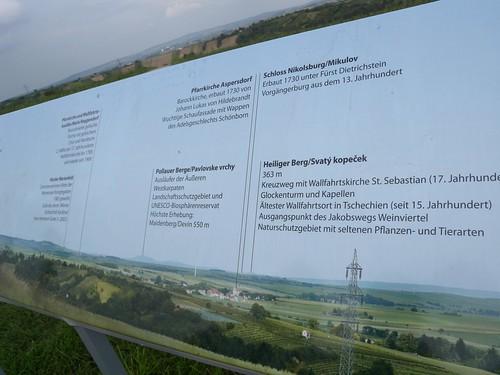 140823_Kellerkatzenweg_140