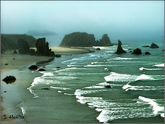 Seascape (Suzanham) Tags: ocean sea seascape fog sand rocks surf waves bandonbeach panasonicfz150