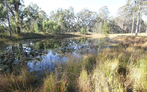 Lot 91 Edward Ogilvie Drive, Smiths Creek NSW