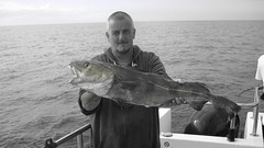 "Alderney Trip - Gary Wylde's 11lb Cod • <a style=""font-size:0.8em;"" href=""http://www.flickr.com/photos/113772263@N05/15184031231/"" target=""_blank"">View on Flickr</a>"