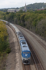 092014_LittleFallsNY_PineTree (glennfresch) Tags: railroad tree pine train private little falls amtrak syracuse schenectady