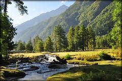 Sangla Valley (mala singh) Tags: india mountains water stream valley himalayas himachalpradesh sangla kinnaur